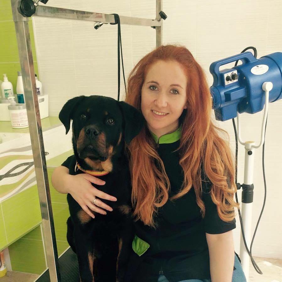 servicios de peluqueria canina en rincon de la victoria malaga